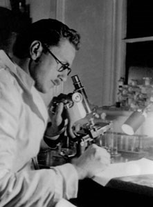 Sir Alister Hardy at a Microscope